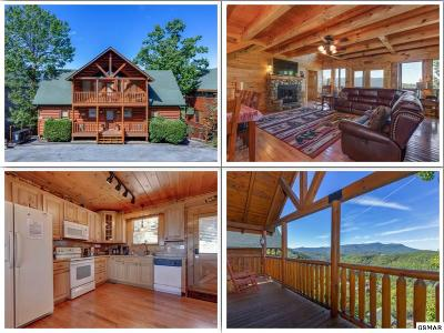 Sevierville Single Family Home For Sale: 946 Black Bear Cub Way