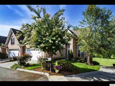 Sevier County Condo/Townhouse For Sale: 1141 Creekside Village Way