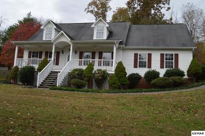 Sevier County Single Family Home For Sale: 825 Pioneer Drive