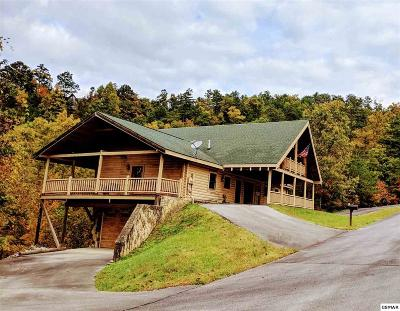 Sevierville Single Family Home For Sale: 4409 Deerskin Rd