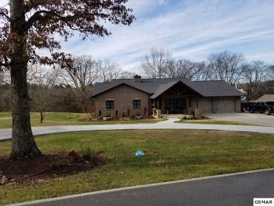 Sevierville Single Family Home For Sale: 1024 Pullen Rd