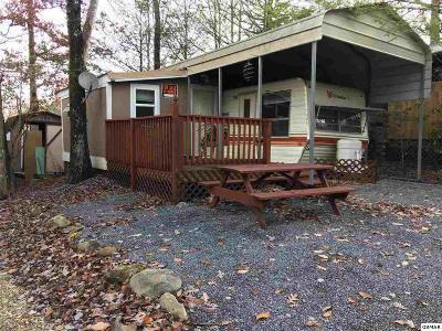 Cocke County Single Family Home For Sale: 494 Sassafras Way