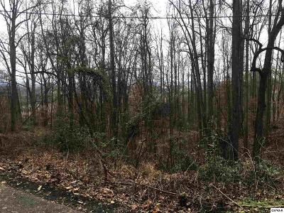 Pigeon Forge Residential Lots & Land For Sale: Lot 37 Twin City Way
