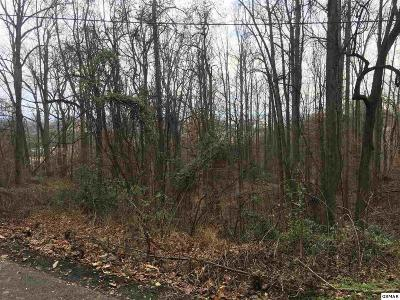 Pigeon Forge Residential Lots & Land For Sale: Lot 34 Twin City Way