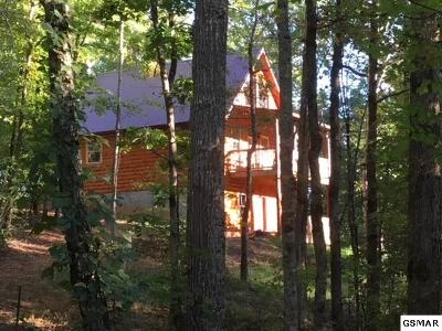 Sevierville Single Family Home For Sale: 3884 Locust Ridge Rd
