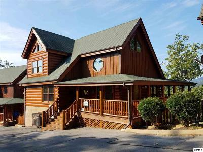 Sevierville Single Family Home For Sale: 2034 Cougar Crossing