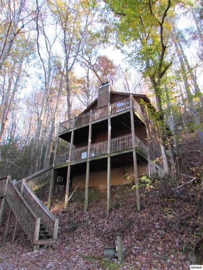 Sevierville Single Family Home For Sale: 1418 School House Gap Rd