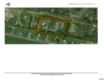 Sevierville Commercial For Sale: 1326 Willow Creek Lane
