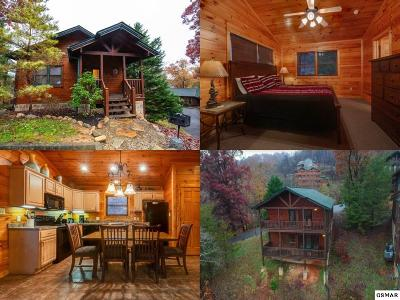Gatlinburg Single Family Home For Sale: 747 Mountain Stream Way