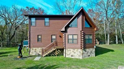 Cocke County Single Family Home For Sale: 178 Wilton Springs Rd