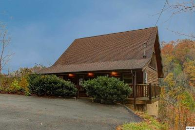 Sevier County Single Family Home For Sale: 909 Grey Fox Trail
