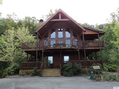 Sevierville Single Family Home For Sale: 4269 Parkside Village Way