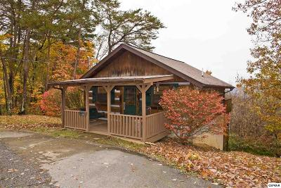 Sevierville Single Family Home For Sale: 1818 Ridgecrest Dr.