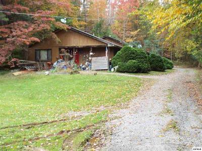 Gatlinburg Multi Family Home For Sale: 460 Buckhorn Road