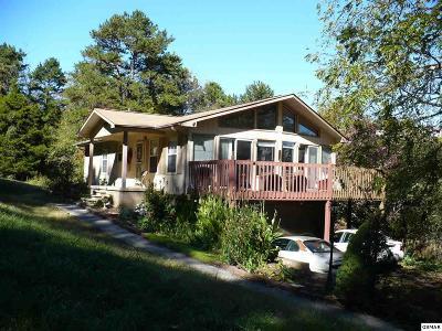 Kodak Single Family Home For Sale: 523 Birch Drive