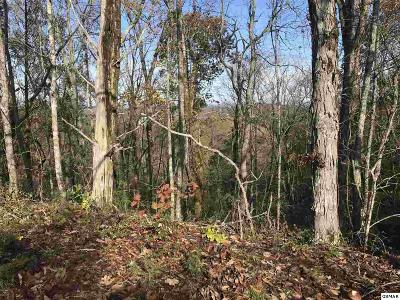 Sevierville Residential Lots & Land For Sale: Lot 59 Kenny Fox Way
