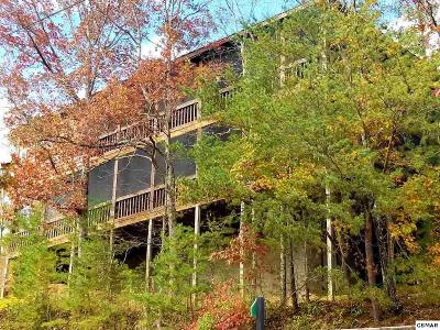 Sevierville Single Family Home For Sale: 1854 Fantasy Way