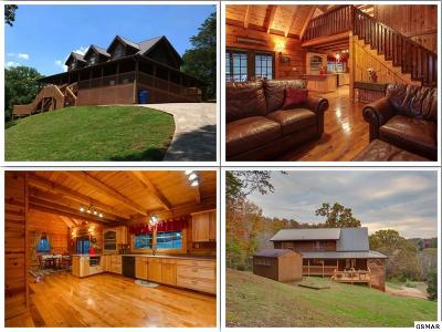 Single Family Home For Sale: 1966 Stonybrook Rd