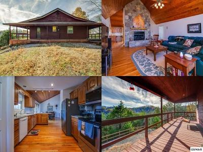 Sevier County, Jefferson County Single Family Home For Sale: 2755 Wildwood Road