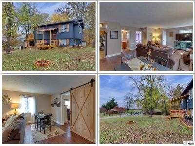 Sevier County Single Family Home For Sale: 1407 E Park Ln
