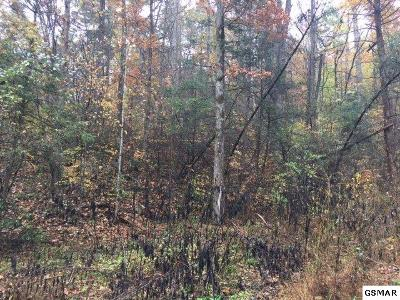 Cocke County Residential Lots & Land For Sale: Green Forest Rd