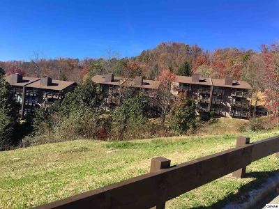 Sevierville Condo/Townhouse For Sale: 1081 Cove Rd U913