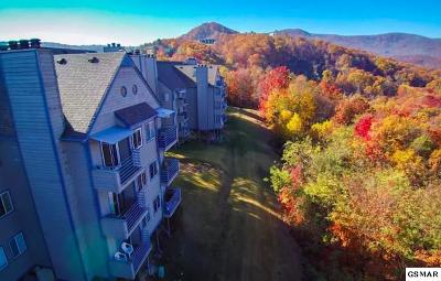 Sevier County Condo/Townhouse For Sale: 1260 Ski View Dr