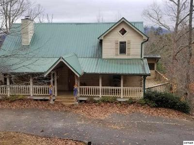 Sevierville Single Family Home For Sale: 1849 Fantasy Way