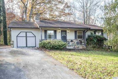 Townsend Single Family Home For Sale: 7710 Chestnut Hill Road
