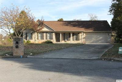 Seymour Single Family Home For Sale: 317 Bream Ct
