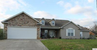 Sevierville Single Family Home For Sale: 2504 Covington Cir