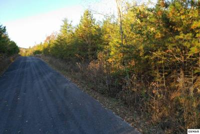 Cocke County Residential Lots & Land For Sale: Lot 107 Huff Overlook Way