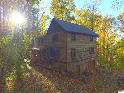 Single Family Home For Sale: 1330 School House Gap Rd
