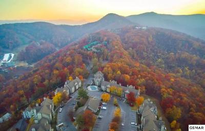 Gatlinburg Condo/Townhouse For Sale: 1260 Ski View Dr