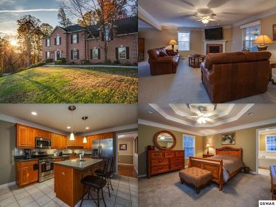 Knoxville Single Family Home For Sale: 7865 Scenic Oaks Road