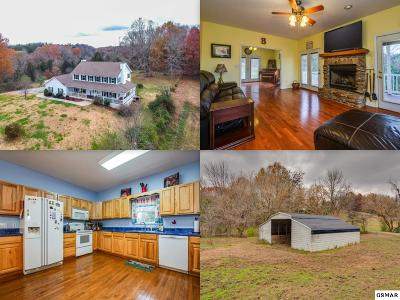 Sevierville Single Family Home For Sale: 293 Red Bud Lane