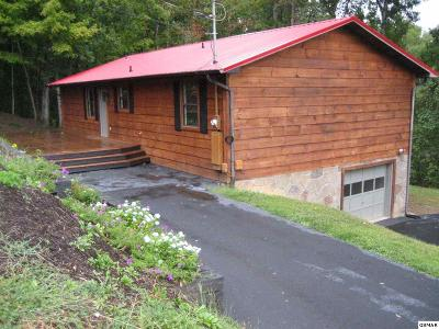 Sevierville Single Family Home For Sale: 210 Forest Court Lane