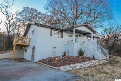Sevierville Single Family Home For Sale: 750 S New Era Rd