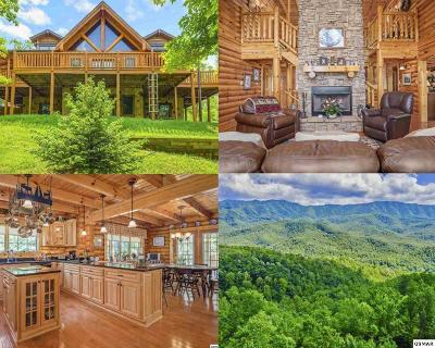 Gatlinburg Single Family Home For Sale: 556 Thissa Way