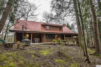 Gatlinburg Single Family Home For Sale: 244 Palmer Rd