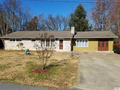 Sevier County Single Family Home For Sale: 1433 Cherokee Cir
