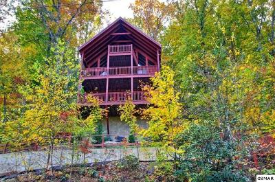 Sevierville Single Family Home For Sale: 1322 Ridgefield Dr