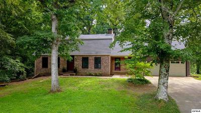 Blount County Single Family Home For Sale: 3941 Riverview Dr