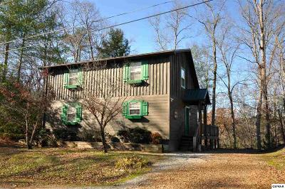 Townsend Single Family Home For Sale: 193 Cold Springs Trace