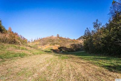 Seymour Residential Lots & Land For Sale: Lot 2 Dripping Springs Rd