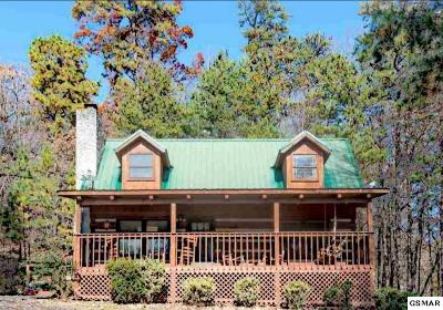Gatlinburg Single Family Home For Sale: 1111 Crites Ct