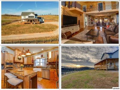 Rutledge Single Family Home For Sale: 1313 Holston Shores Dr