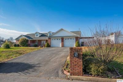 Sevierville Single Family Home For Sale: 1616 Turtle Dove