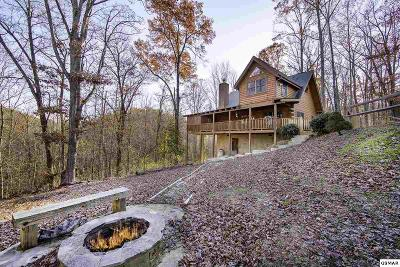 Sevierville Single Family Home For Sale: 2439 Valley Mountain Way
