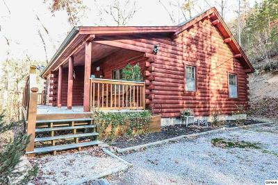 Sevierville Single Family Home For Sale: 1408 Black Oak Dr
